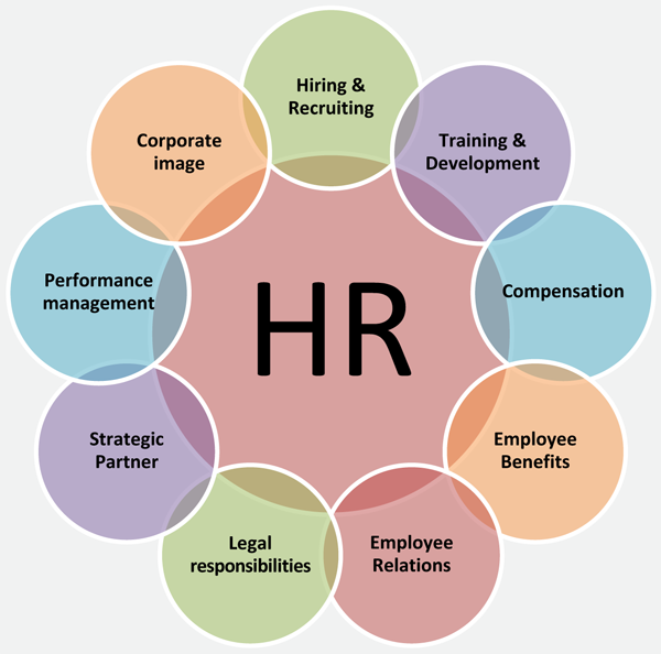 Functions of an HR department